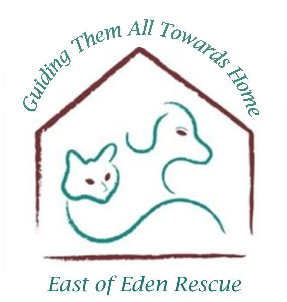 East of Eden Canine Rescue