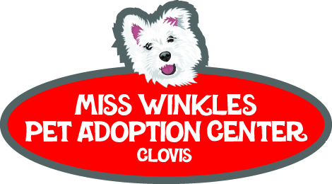 Miss Winkles Pet Adoption Center, Clovis