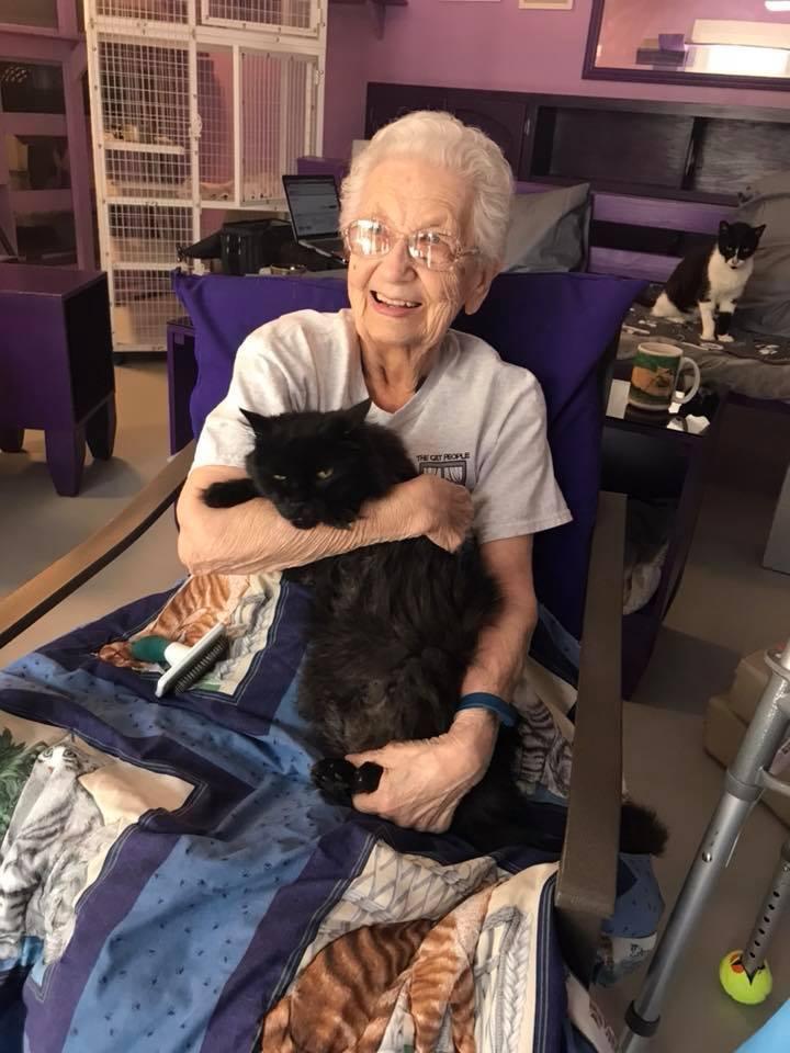 Volunteer Elaine, socializing an adoptable cat.