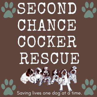 Second Chance Cocker Rescue