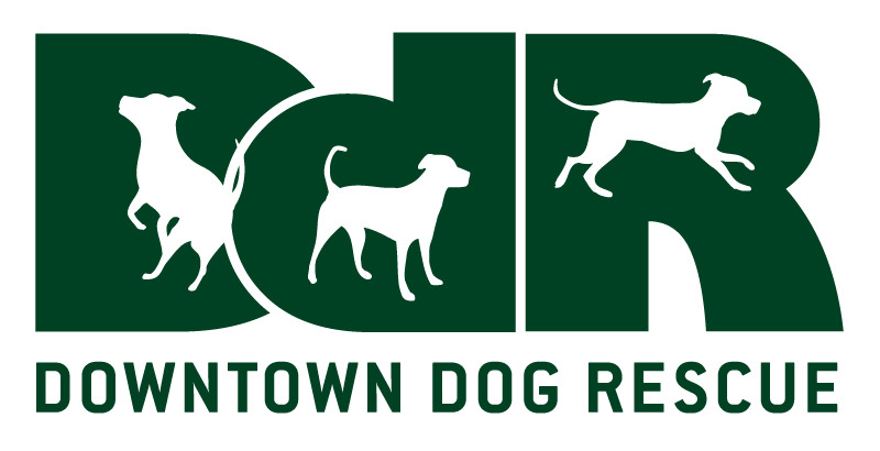 Downtown Dog Rescue