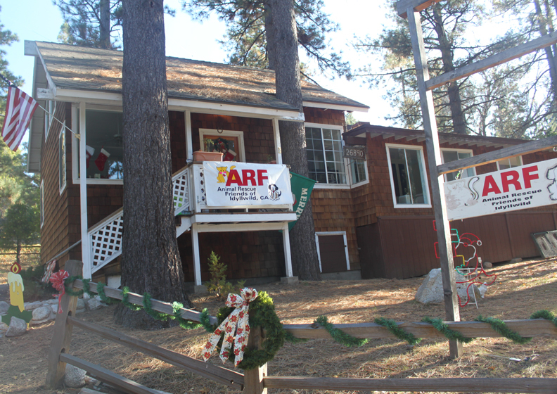 ARF - Animal Rescue Friends/Idyllwild