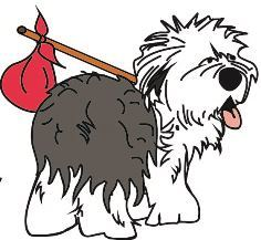 Pets for Adoption at Old English Sheepdog Rescue of Southern