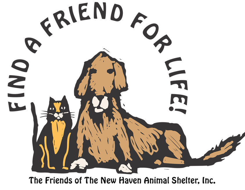 Pets for Adoption at The Friends of the New Haven Animal