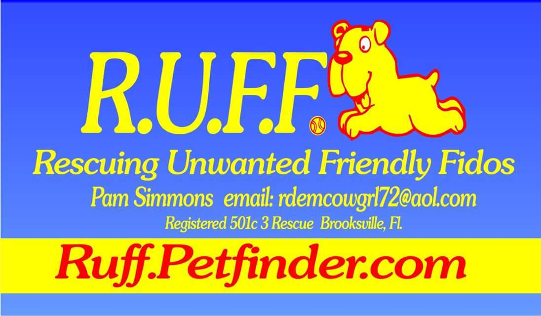 R.U.F.F. Rescuing Unwanted Friendly Fidos
