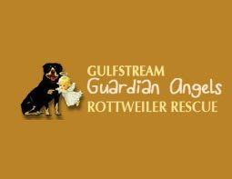 Pets For Adoption At Gulfstream Guardian Angels Rottweiler Rescue