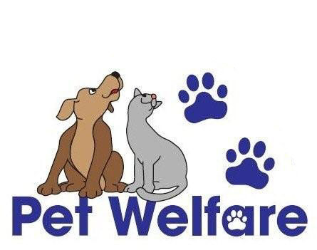 Pet Welfare