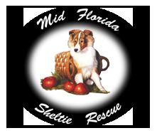 Mid Florida Sheltie Rescue