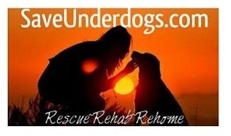 Save UnderDogs
