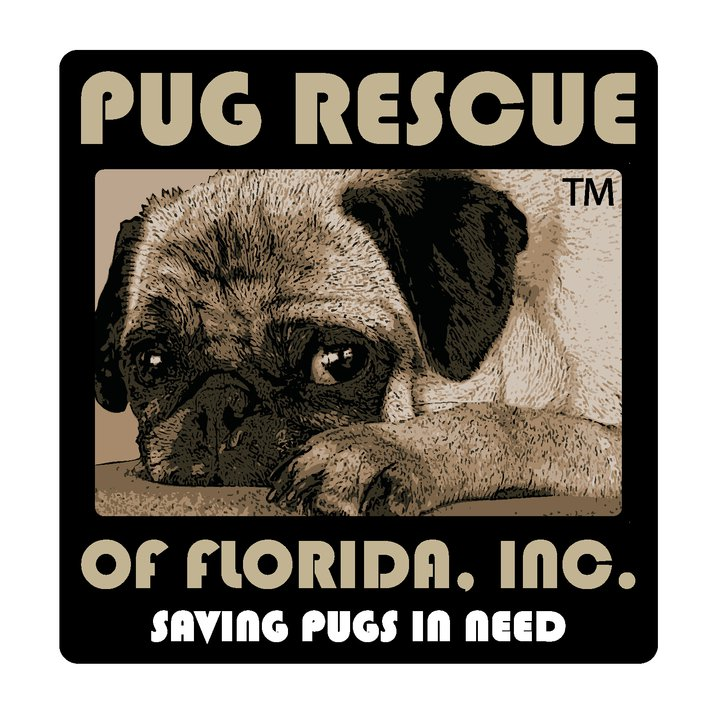 Pets For Adoption At Pug Rescue Of Florida Inc In Windermere