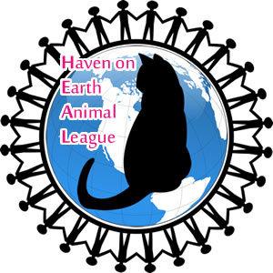 Haven on Earth Animal League Inc.