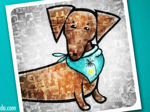 Pets For Adoption At Dachshund Rescue South Florida In Miami Beach
