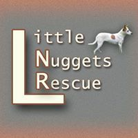 Little Nuggets Rescue