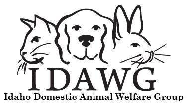 Image of: Horse Image Petfinder Pets For Adoption At Idaho Domestic Animal Welfare Group In Nampa