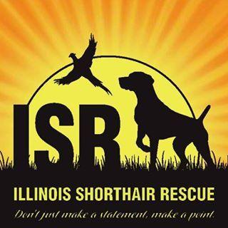 Illinois Shorthair Rescue