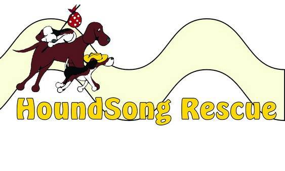 HoundSong Rescue