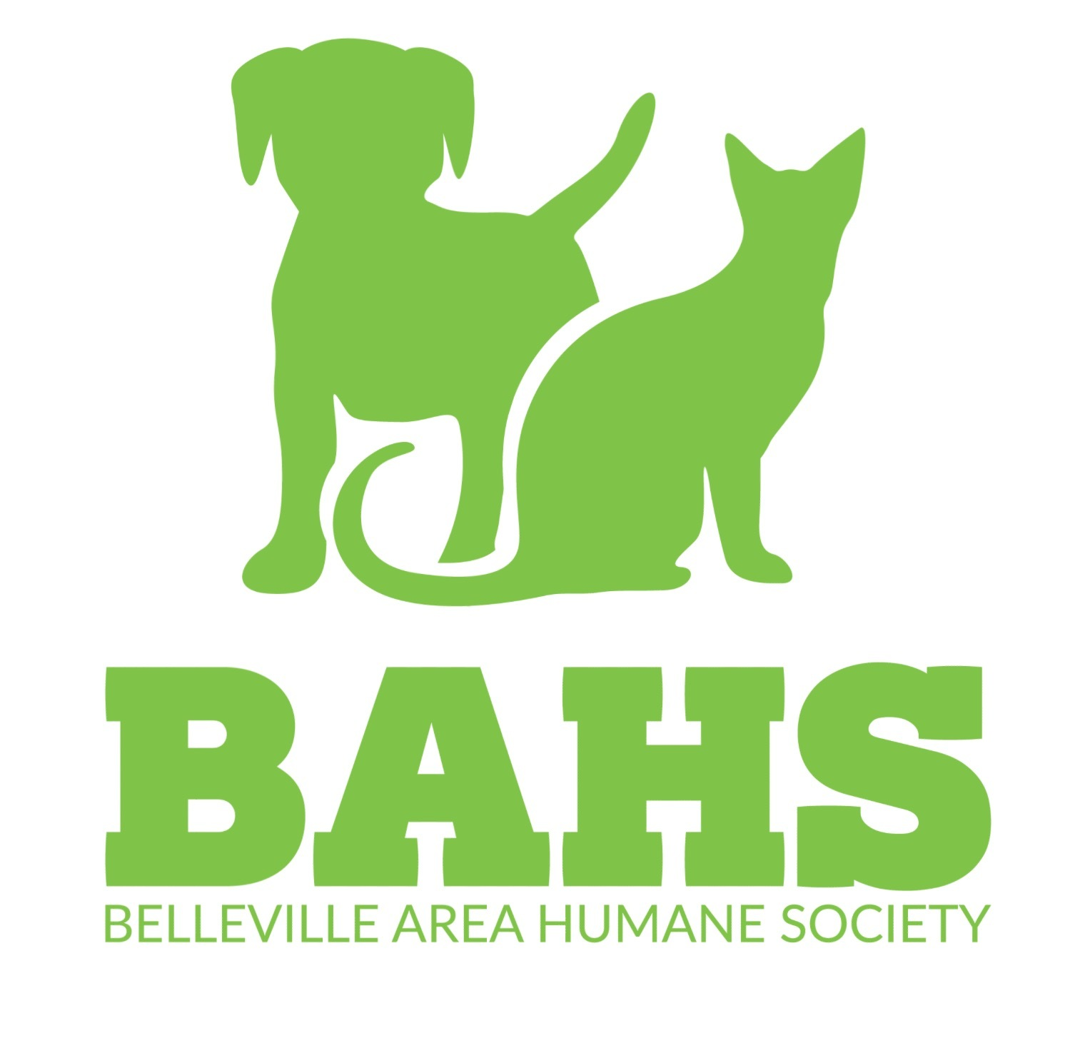 Belleville Humane Society Cats
