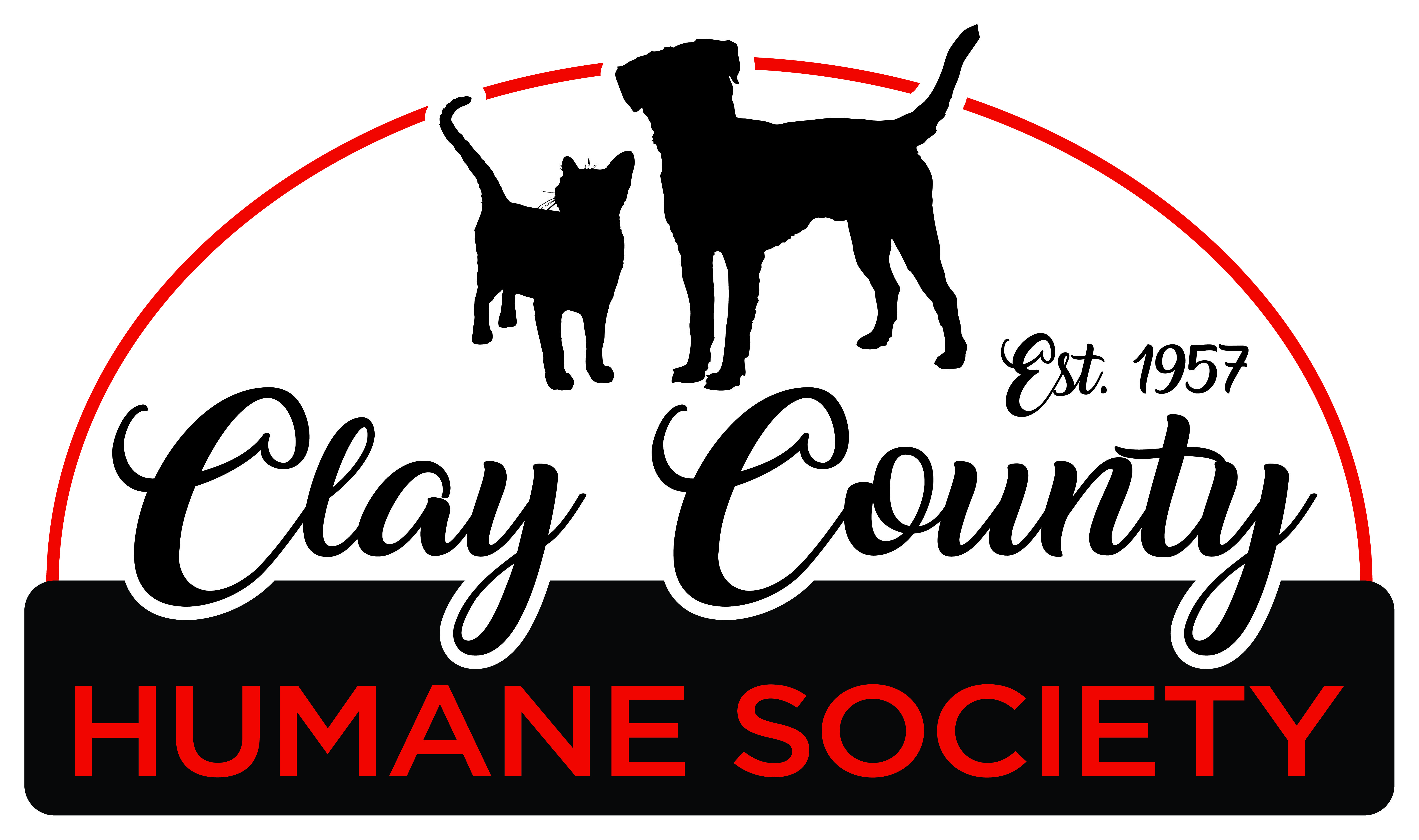 Image of: Hsus Image Playtime Pets For Adoption At Clay County Humane Society In Brazil In