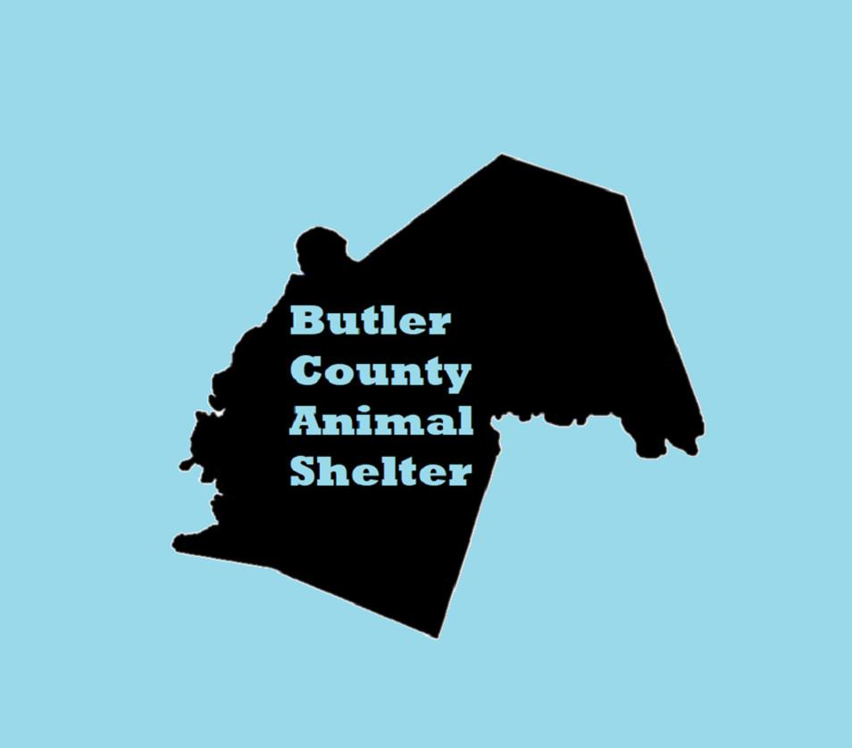 Butler County Animal Shelter KY