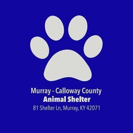 Murray/Calloway County Animal Shelter