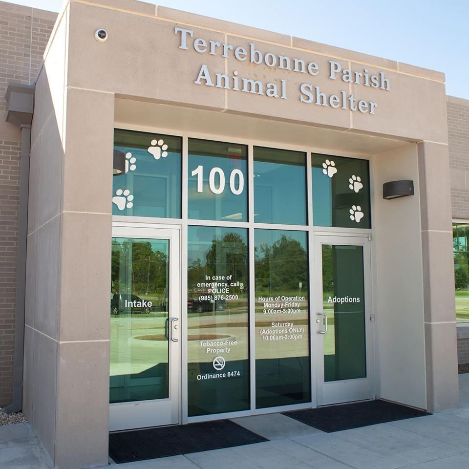 Terrebonne Parish Animal Shelter
