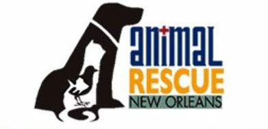 ARNO (Animal Rescue New Orleans)