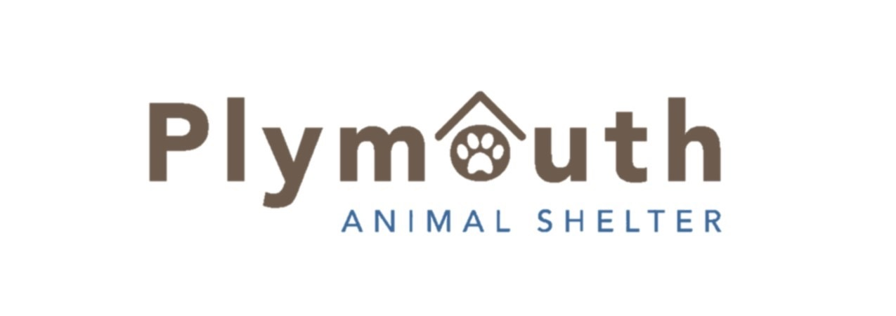 Plymouth Animal Shelter Adoptions