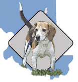 Beagle Rescue of Southern Maryland Inc.
