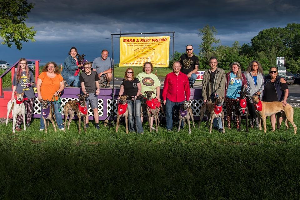Maine Greyhound Placement Service