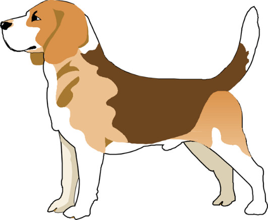 Tall Tails Beagle Rescue