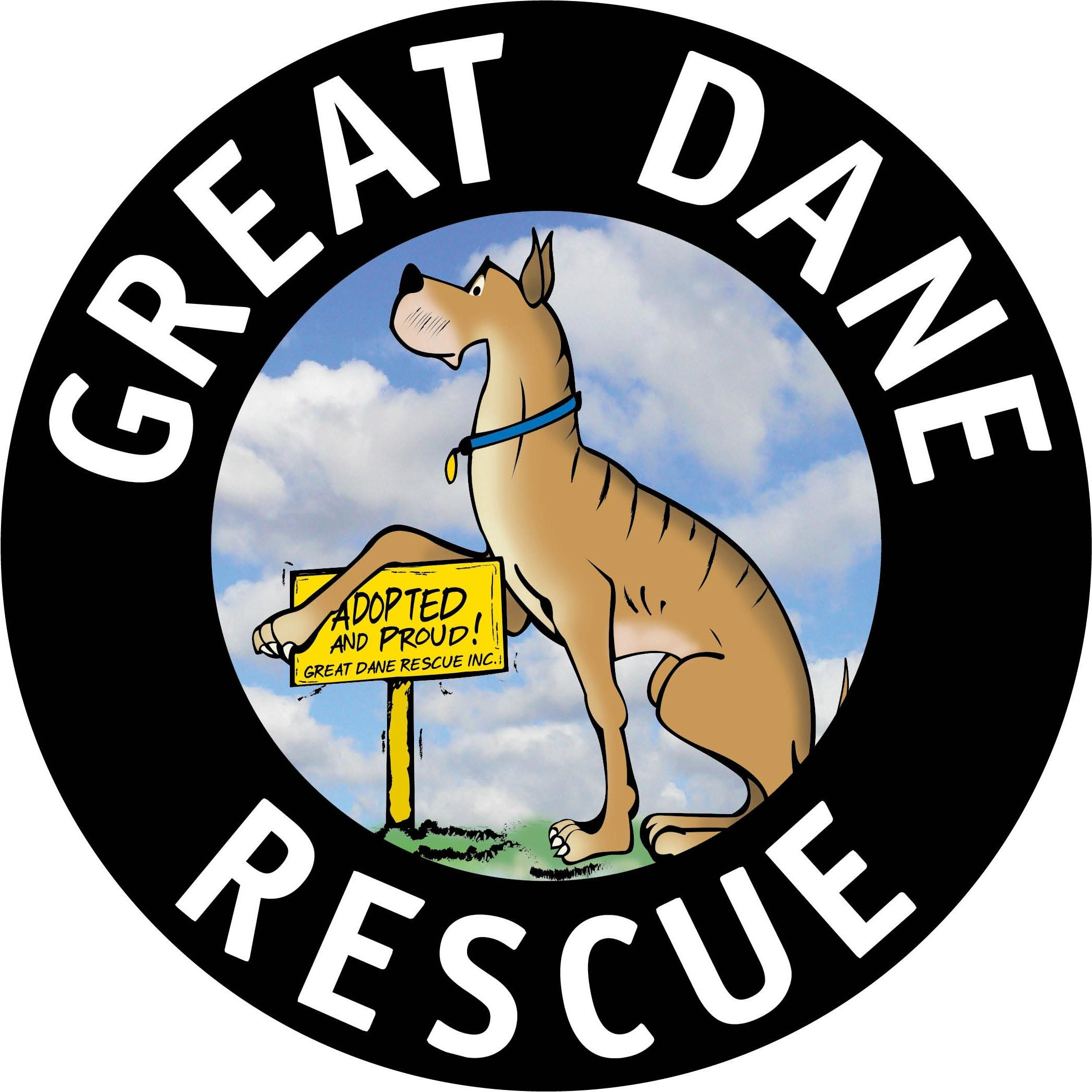 Pets For Adoption At Great Dane Rescue Inc In Plymouth Mi