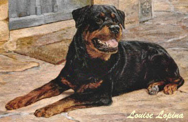 Pets For Adoption At Rottweiler Rescue Of Michigan Inc In Lansing