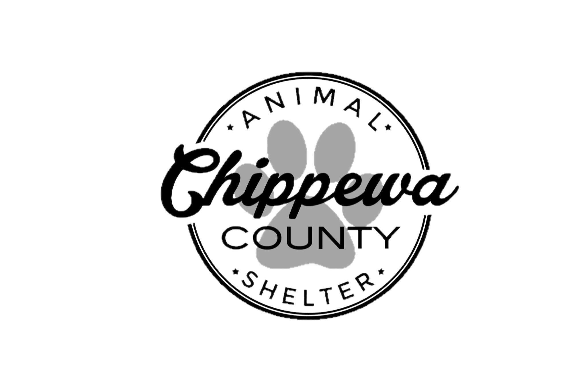 Pets for Adoption at Chippewa County Animal Control Shelter