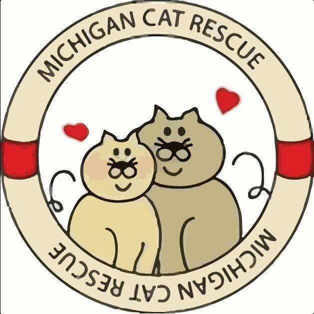 Michigan Cat Rescue