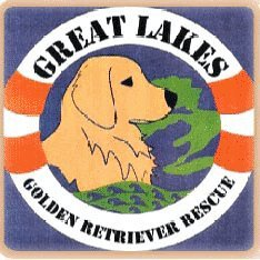 Pets for Adoption at Great Lakes Golden Retriever Rescue, in Grand