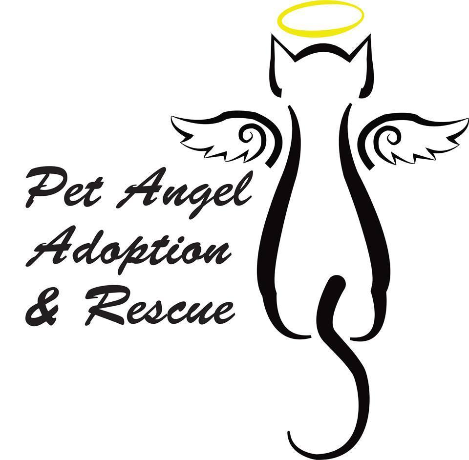 Pet Angel Adoption and Rescue Inc.