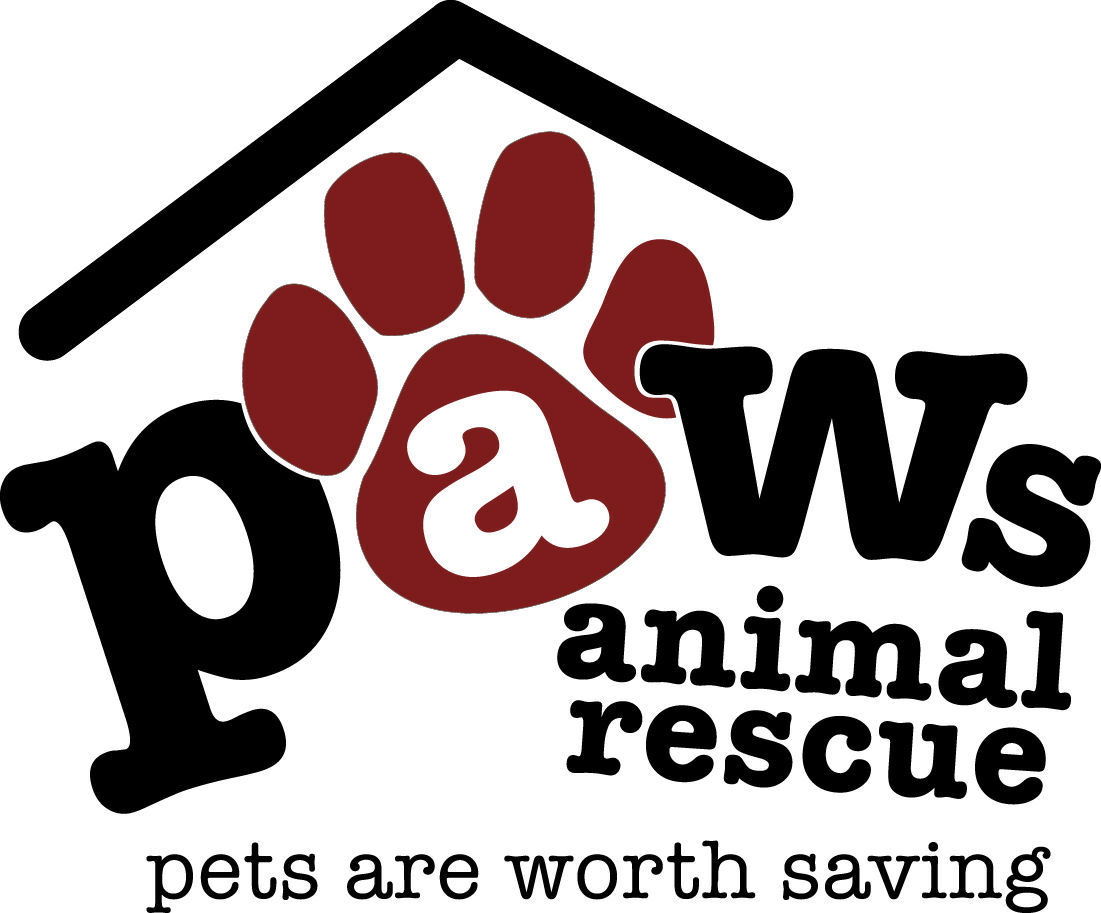 e4f88fbb Pets for Adoption at Paws Rescue, in Swartz Creek, MI | Petfinder