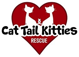 Cat Tail Kitties Rescue