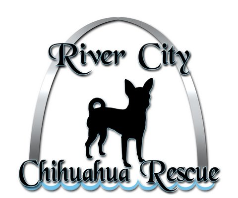 River City Chihuahua Rescue