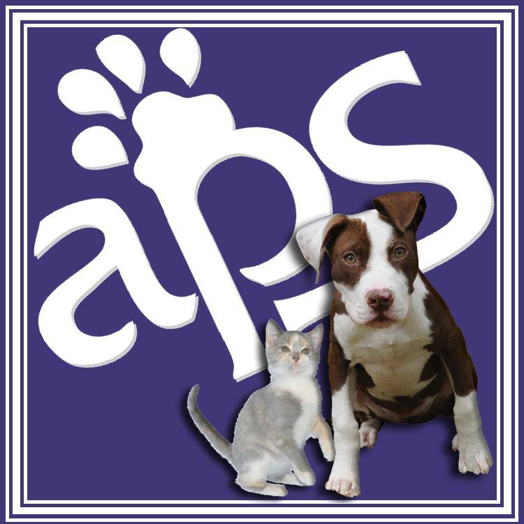 Pets For Adoption At Animal Protection Society Of Durham In Durham