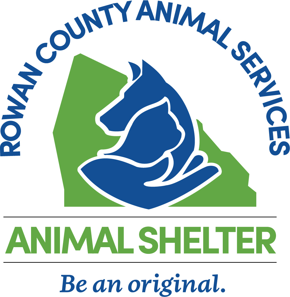 Pets for Adoption at Rowan County Animal Shelter, in Salisbury, NC