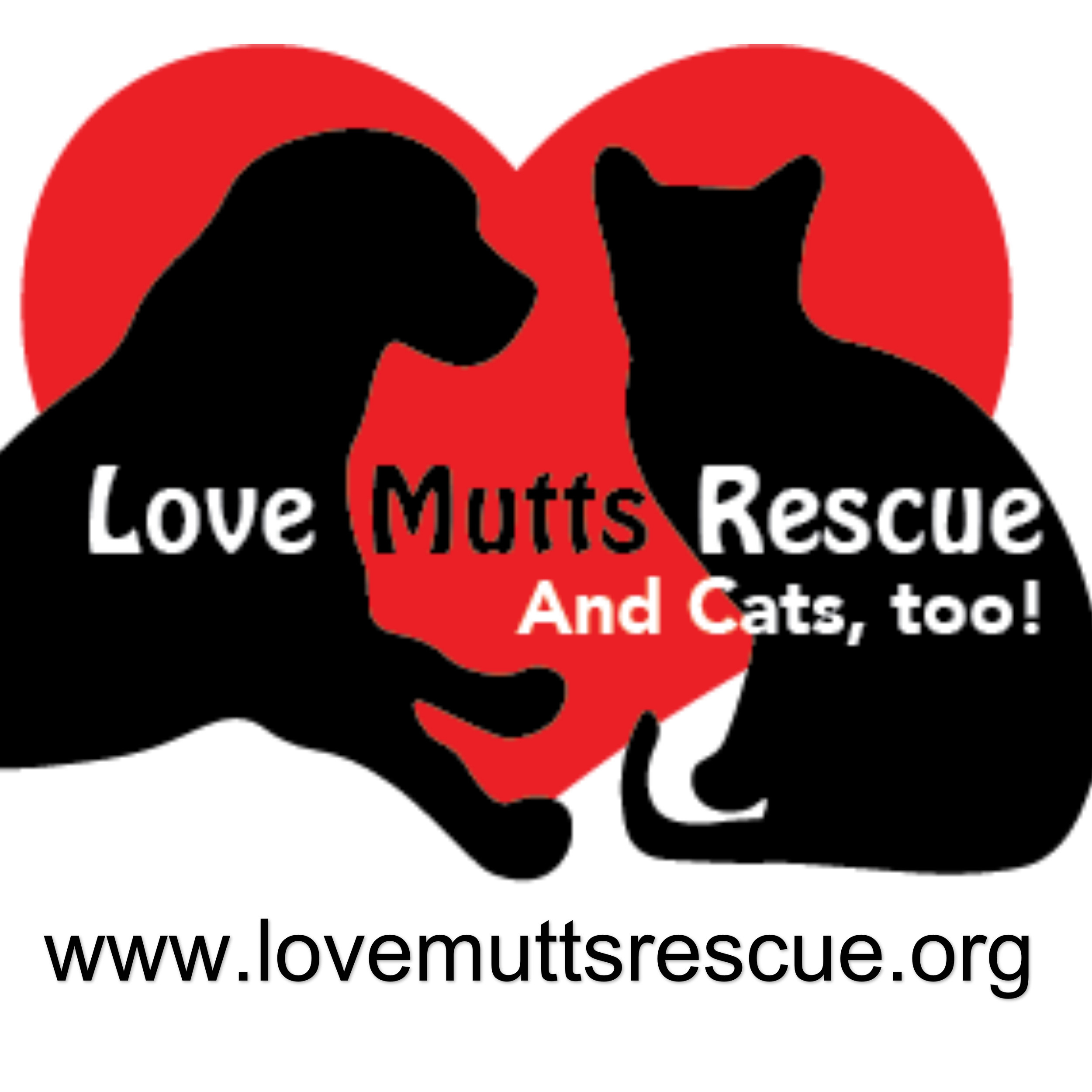 love mutts rescue petfinder The daisy troop had 16 girls in attendance to earn the magnificent mutts rescue badge tonight how did you get involved with magnificent mutts & meows and what.