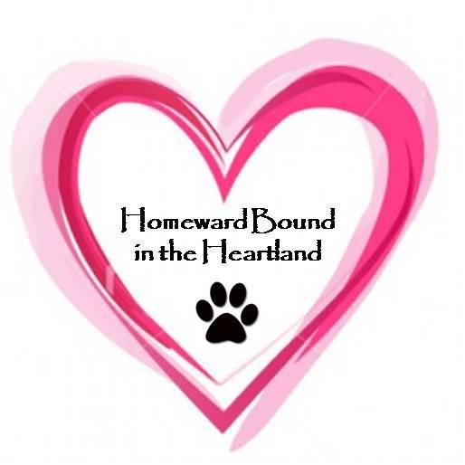 Homeward Bound in the Heartland Animal Rescue