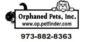 Orphaned Pets, Inc.