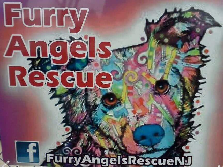 Furry Angels Rescue