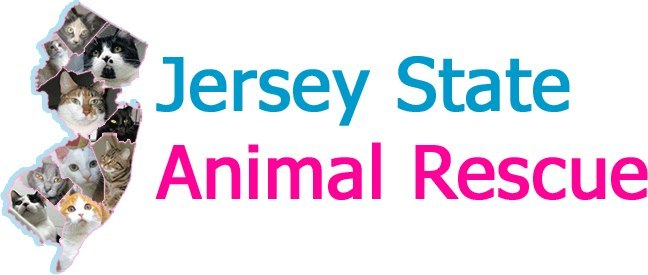 Jersey State Feline Fanciers Inc