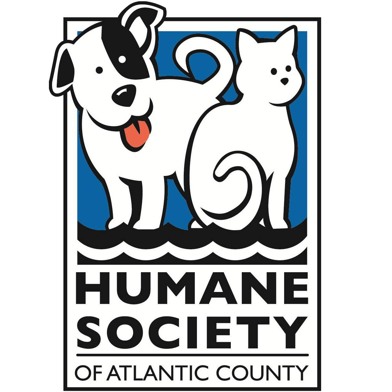 Pets for Adoption at The Humane Society of Atlantic County