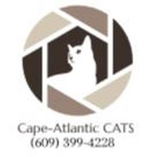 Cape-Atlantic C.A.T.S.