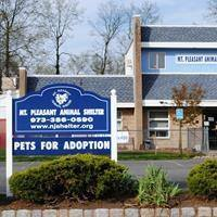 Mt. Pleasant Animal Shelter