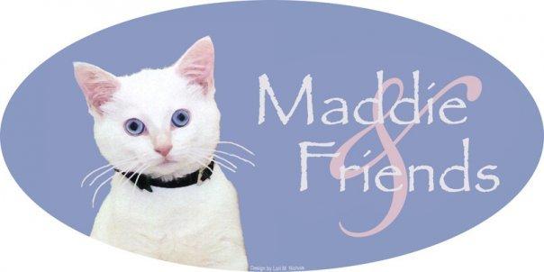 Maddie & Friends Inc